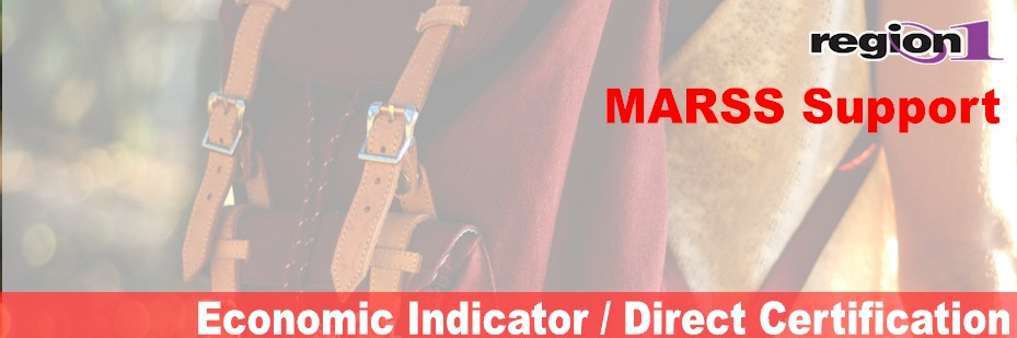 Economic Indicator / Direct Certification