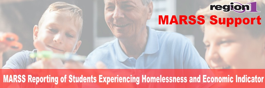 MARSS Reporting of Students Experiencing Homelessness and Economic Indicator